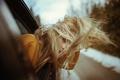 Картинка ветер, волосы, девушка взгляд