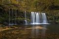 Картинка лес, вода, камни, водопад