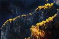 Картинка деревья, горы, скалы, Италия, Ломбардия