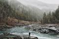 Картинка лес, туман, река, United States, горная, photo, California